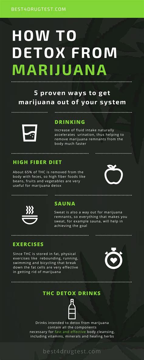 How To Detox Of Thc 5 ways to detox from marijuana infographics