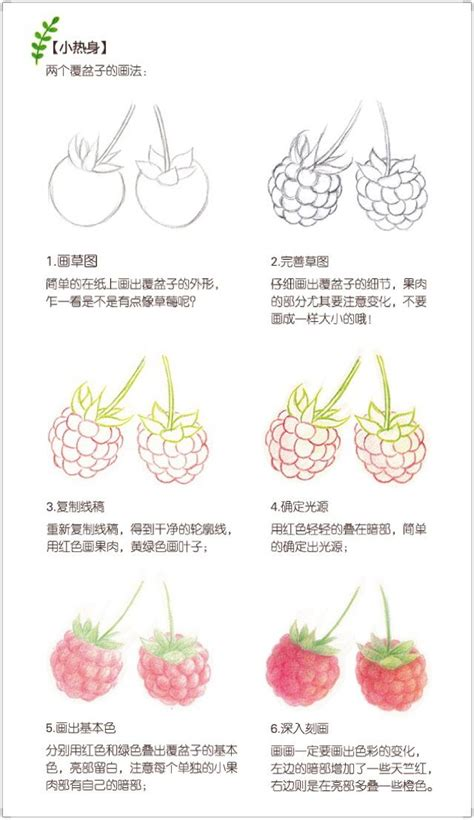 colored pencil techniques for beginners raspberry drawing color pencil techniques step by step