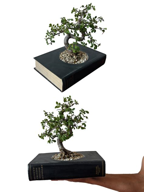 Book Planter by Decorative Planters Made Of Recycled Books Digsdigs