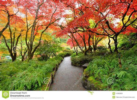 giardini in autunno giardino giapponese di autunno immagine stock