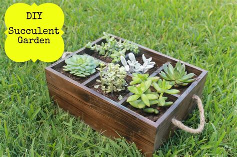diy succulent diy succulent garden haute mommy blog