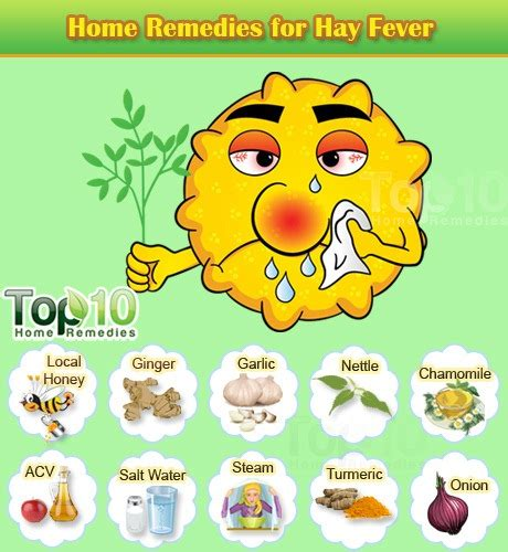 home remedies for hay fever top 10 home remedies