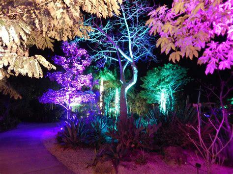 lights in the garden lights in the garden naples botanical garden