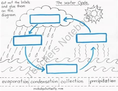 The Water Cycle Worksheet Pdf by Pin By Vaughn On Classroom Ideas