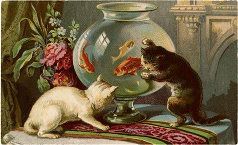 cats  goldfish clip art  graphics fairy