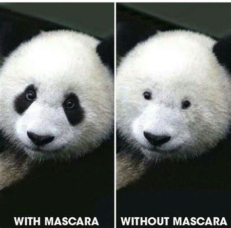 Panda Meme Mascara - with or without mascara kapakkizi kesfeticindekiguzeli
