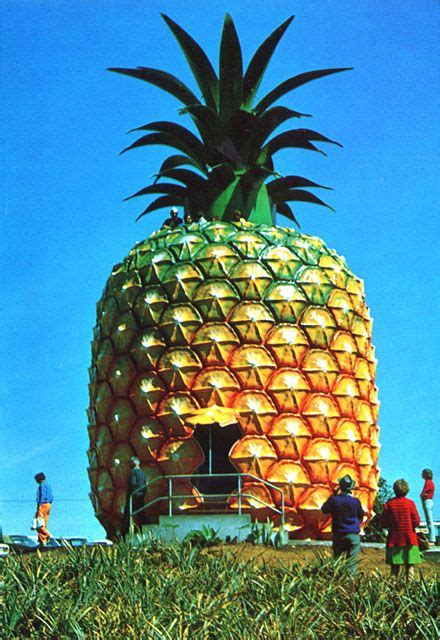 pineapple house giant pineapple house pineapple pinterest bobs cabin and logs
