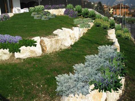 progetti giardini gratis foto images progetto aiuola gratis dall album progetti