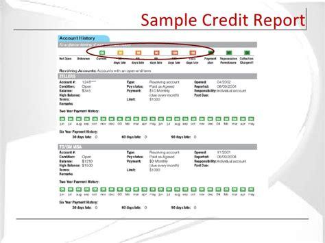 Credit Investigation Format sle slides