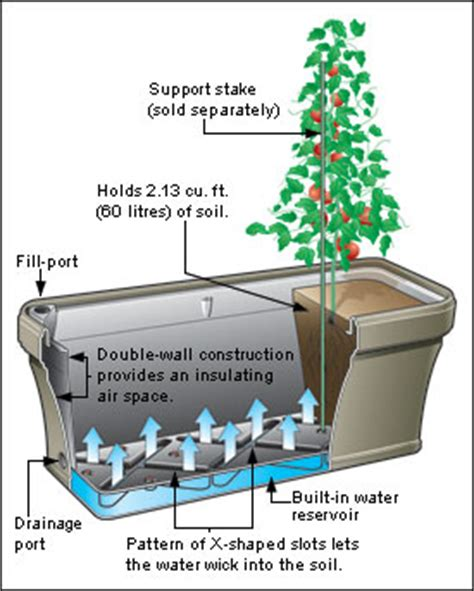 how do self watering planters work self watering planter lee valley tools