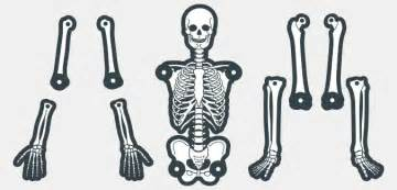 skeleton template to cut out printable skeleton template