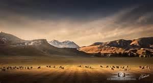 Landscape Photography New Zealand New Zealand Landscape Photo Prints New Zealandscapes