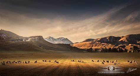 Landscape Pictures New Zealand New Zealand Landscape Photo Prints New Zealandscapes