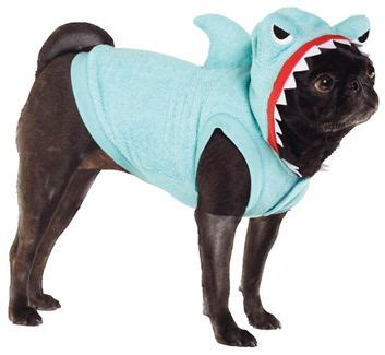 pug petsmart cats sharks and costumes on