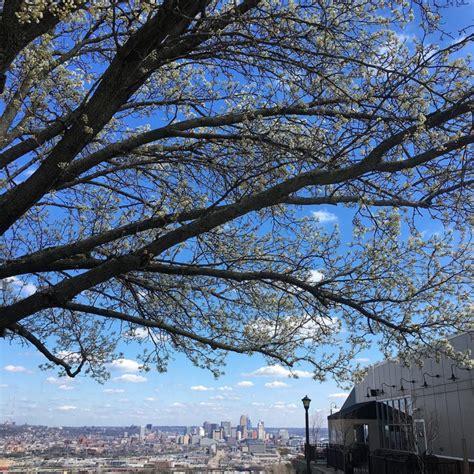 public house cincinnati 20 places you have to explore cincinnati ohio explored