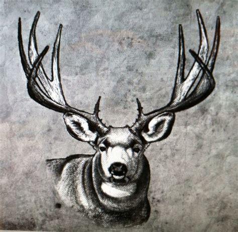 mule deer tattoo designs mule deer idea ideas