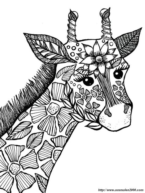 giraffe coloring page for adults ausmalbilder f 252 r erwachsene bild giraffe zum ausmalen