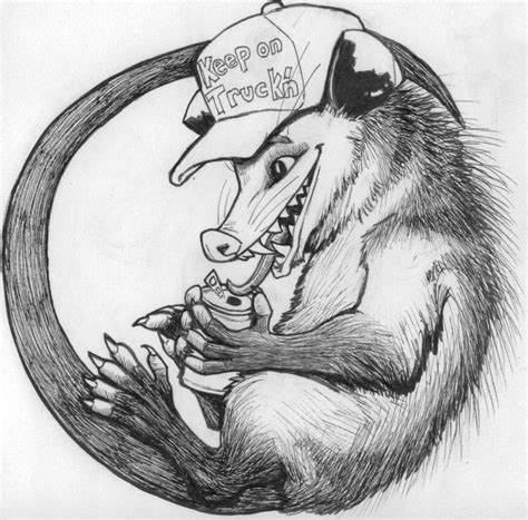 opossum trucker by stephanieakafany on deviantart