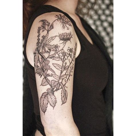 herb tattoo 325 best images about tattoos on floral arm
