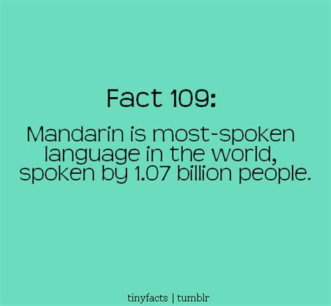 mandarin quotes quotesgram