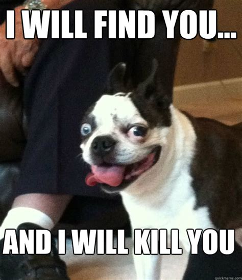 Derp Dog Meme - derp dog meme memes