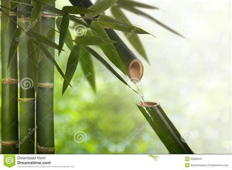 imagenes del zen fuente de bamb 250 del zen imagen de archivo imagen 32856341