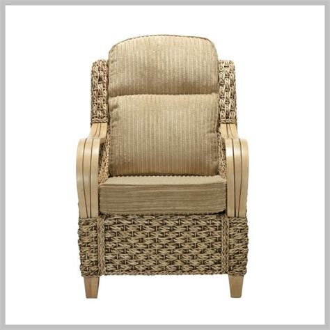 Banana Leaf Armchair by Armchair Conservatory Furniture Durable Removable