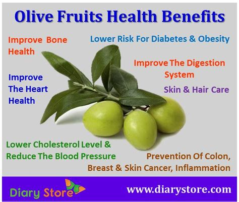 Olive For Health And olive fruit nutrition facts health benefits olive fruits