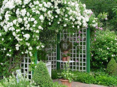 Wohnen Und Garten Foto by 44 Besten Drau 223 En Leserbilder Bilder Auf