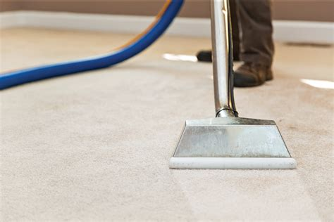 Carpet Cleaning   Mr. Steam Carpet Cleaning