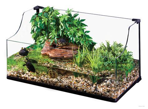 Aquascape Aquarium Supplies Exo Terra Turtle Terrarium Large Wasserlebensraum