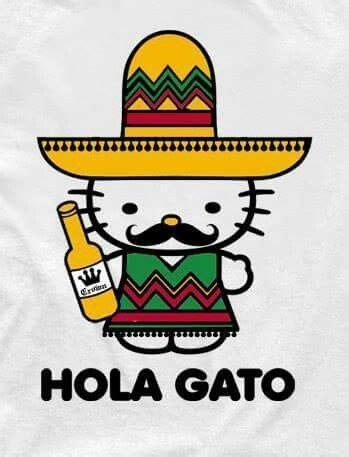 imagenes de kitty mexicana 26 best cinco de mayo images on pinterest drinking