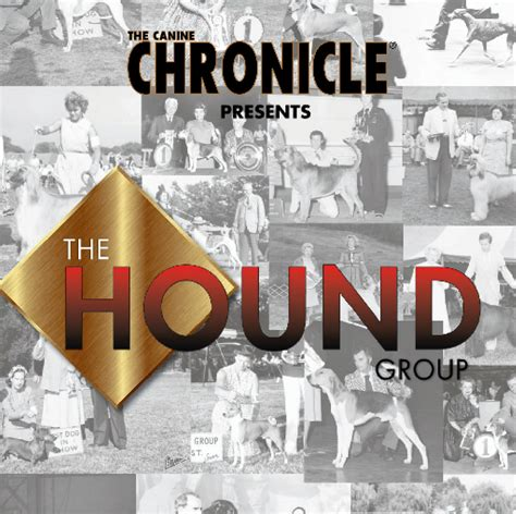 canine chronicle the canine chronicle hound hall of fame 2012 canine