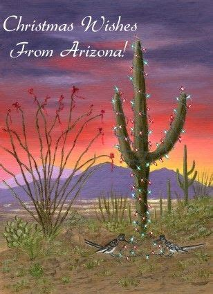 desert christmas cards southwest christmas holiday cardsboxed cardspersonalized card