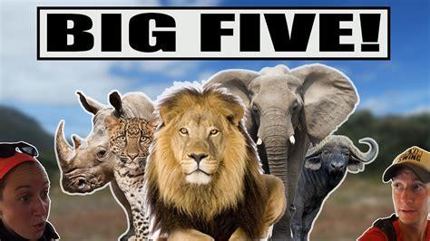 Big Picture Post Nation 5 by Big Five 192 2 M 200 Tres D Un Kruger National Park