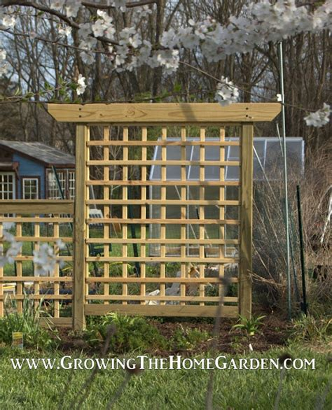 how to build an arbor trellis building an arbor style trellis growing the home garden