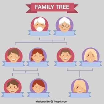 family tree vectors photos and psd files free download