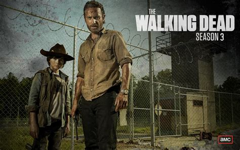 The Walking Dead Iii wallpaper walking dead 3 console players
