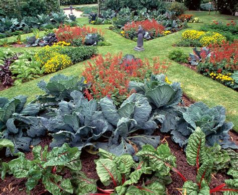 how to make a beautiful garden 678 best beautiful vegetable gardens images on pinterest