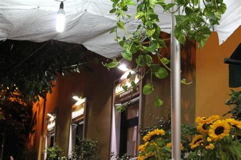ristorante porto corallo porto corallo foto di porto corallo roma tripadvisor
