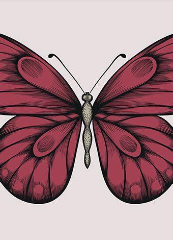poesias y adivinanzas de mariposas leyendo leyendo disfruto y poesias y adivinanzas de mariposas leyendo leyendo