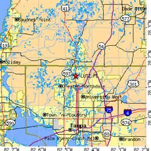 lutz florida fl population data races housing economy