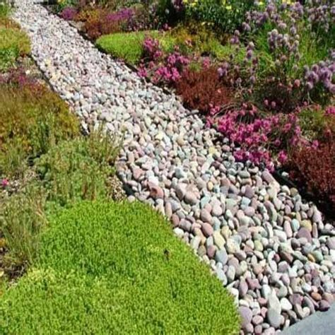 Garden Decorative Pebble by Garden Pebbles 17 Best Images About Driveway Front Walkway