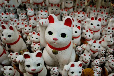 Japanese Cat Large Patung Pajangan Kucing Keberuntungan Jepang kumpulan berita maneki neko terbaru japanese station