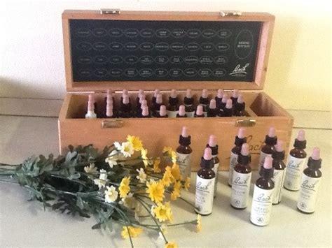 come preparare i fiori di bach come assumere i fiori di bach rimedi floreali e fiori