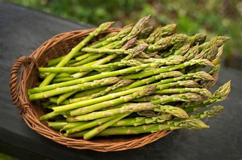 come congelare gli asparagi guide di cucina