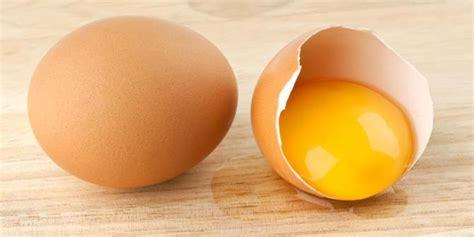 manfaat kuning telur  kesehatan merdekacom