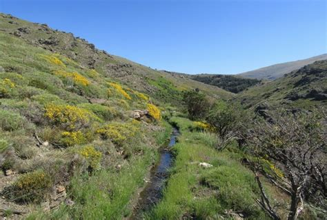 farm for sale in spain farm for sale in spain tiny house finder buy sell