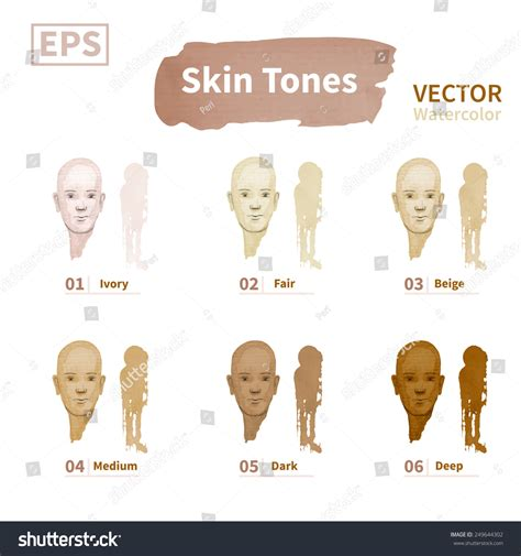 the natural tones from ivory to beige to taupe are skin tones ivory fair beige medium stock vector 249644302