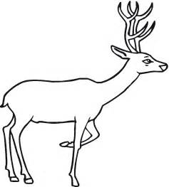 deer coloring page free deer coloring pages